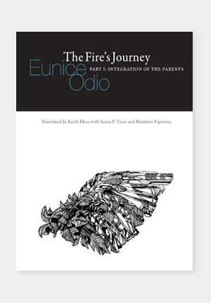 odio-fires-journey-01
