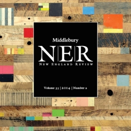 ner_35-2_front_cover-sq